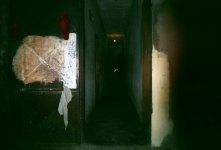 Patrick Wokmeni, Les belles de New-Bell, Porte d'Entrée, Douala, 2006