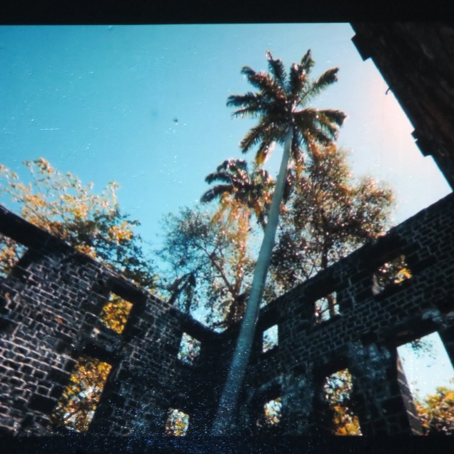 Shiraz Bayjoo, still from Ile de France screened at Musée Blackitude as part of Digital Africa.